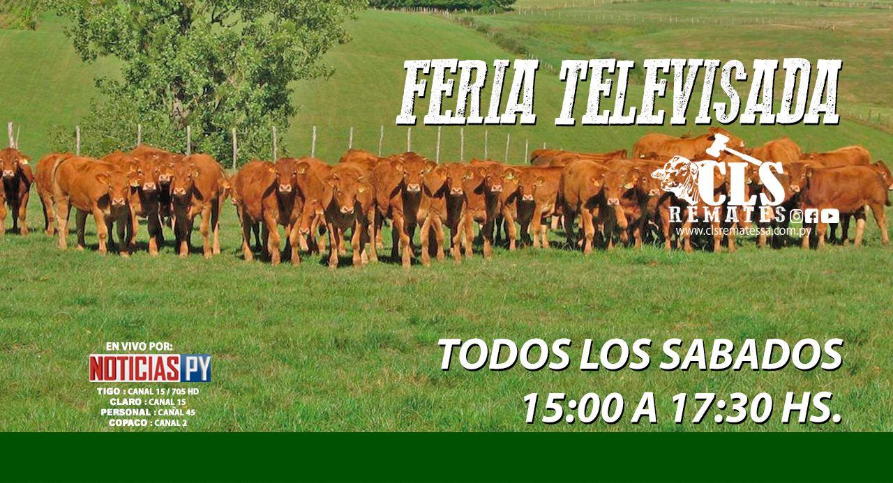 FERIA TELEVISADA - SABADOS 15 HORAS