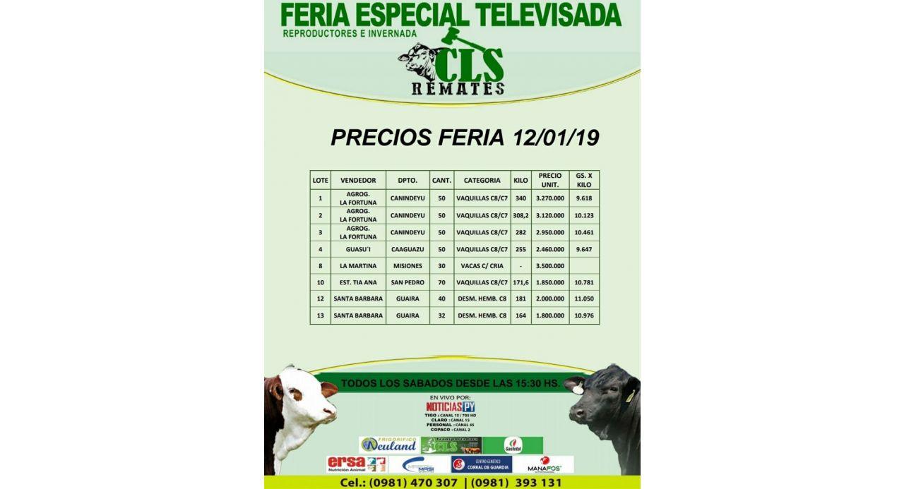 Precios Feria 12/01/2019